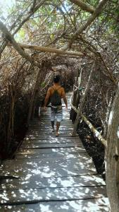 trilha-de-tamandare